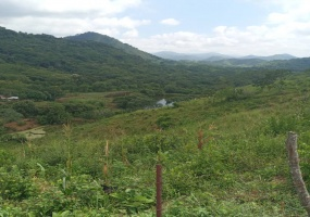 Valle Morin, Aragua, ,Hacienda - Finca,En venta,Valle Morin,2141